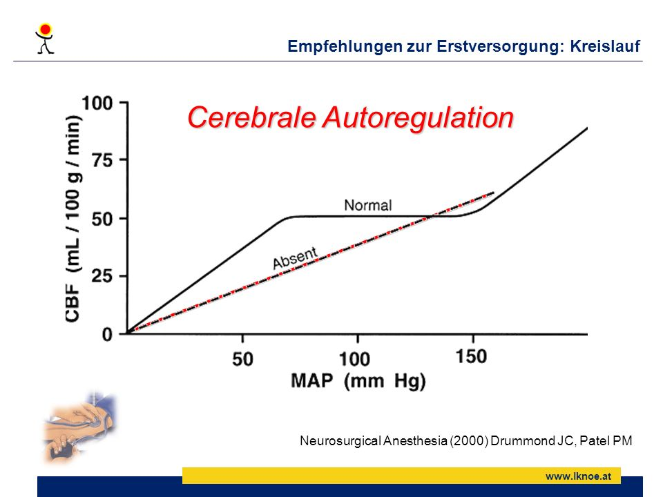 Cerebrale Autoregulation