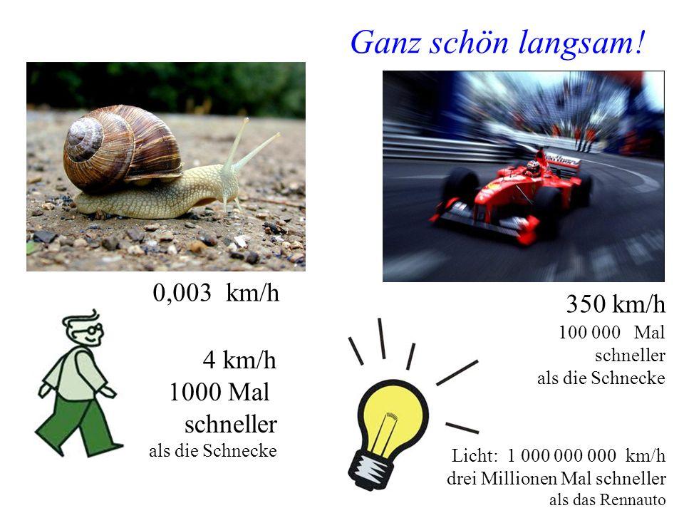 Ganz schön langsam! 0,003 km/h 350 km/h 4 km/h 1000 Mal schneller