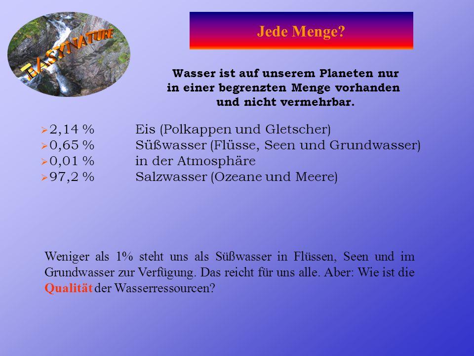 Jede Menge 2,14 % Eis (Polkappen und Gletscher)