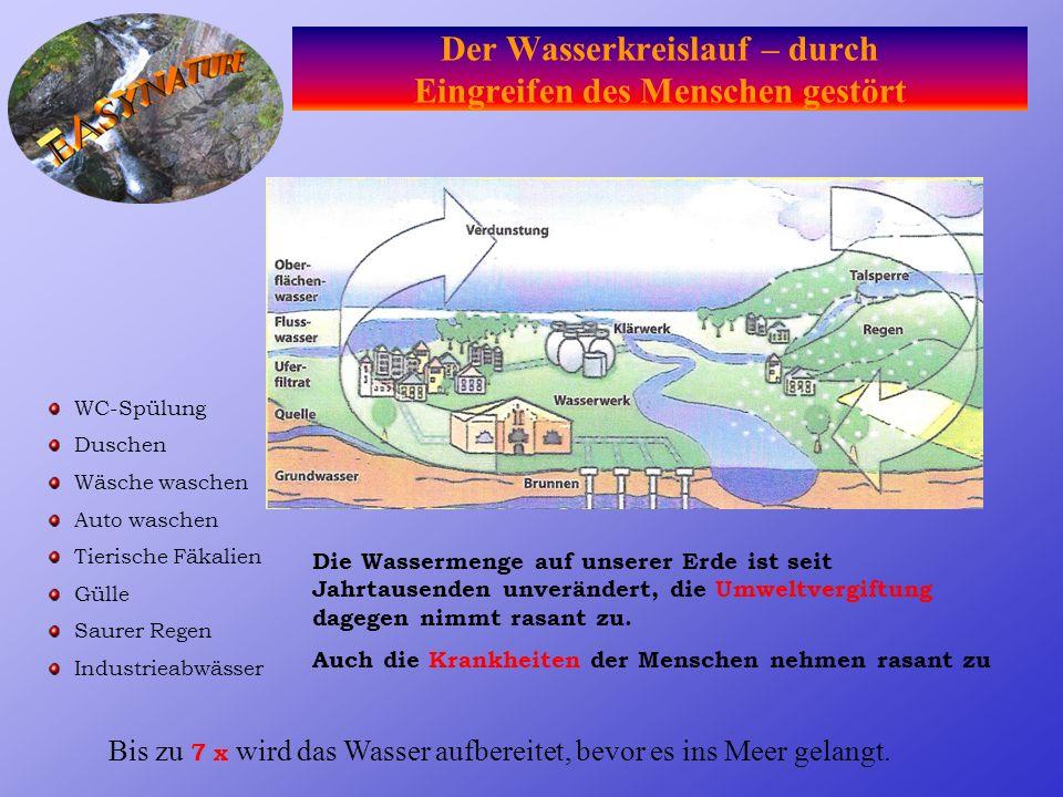 Der Wasserkreislauf – durch Eingreifen des Menschen gestört