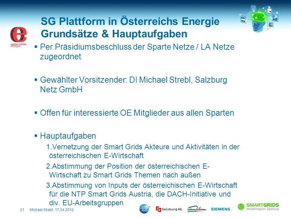 SG Plattform in Österreichs Energie Grundsätze & Hauptaufgaben