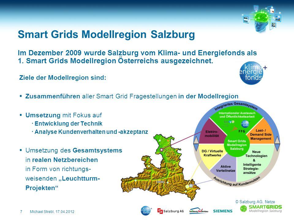 Smart Grids Modellregion Salzburg