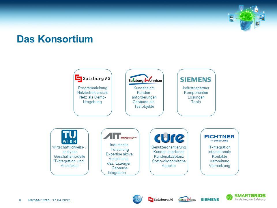 Das Konsortium Programmleitung Netzbetreibersicht Netz als Demo-