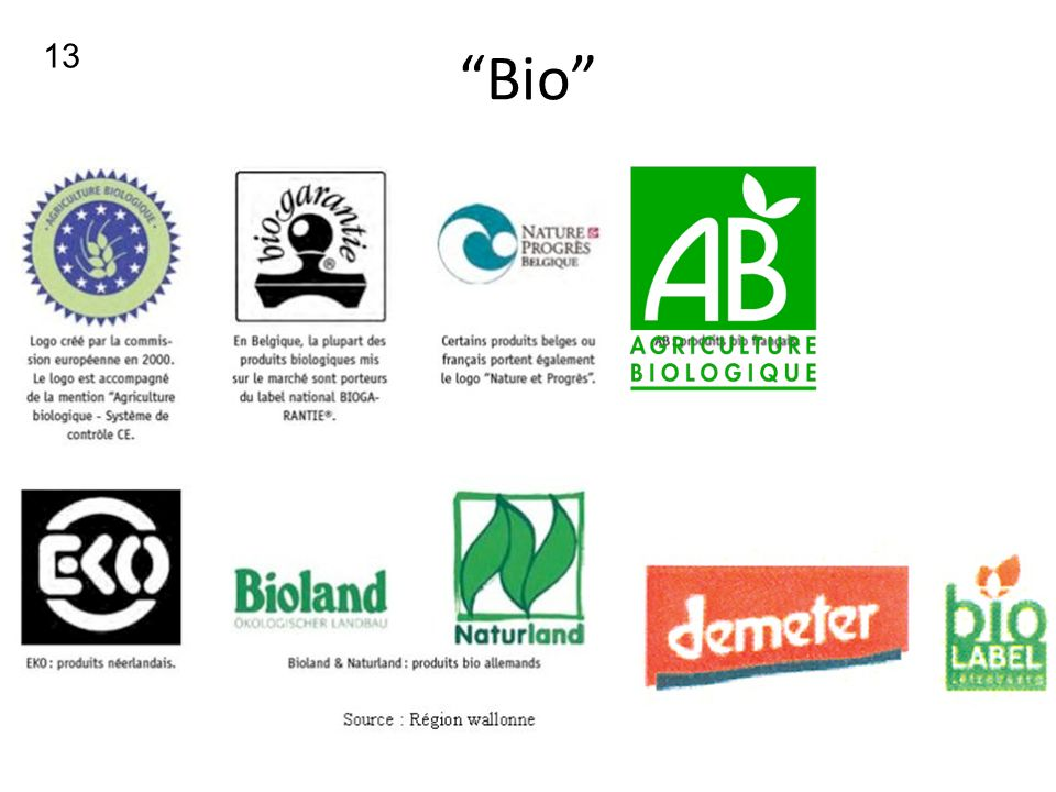 13 Bio