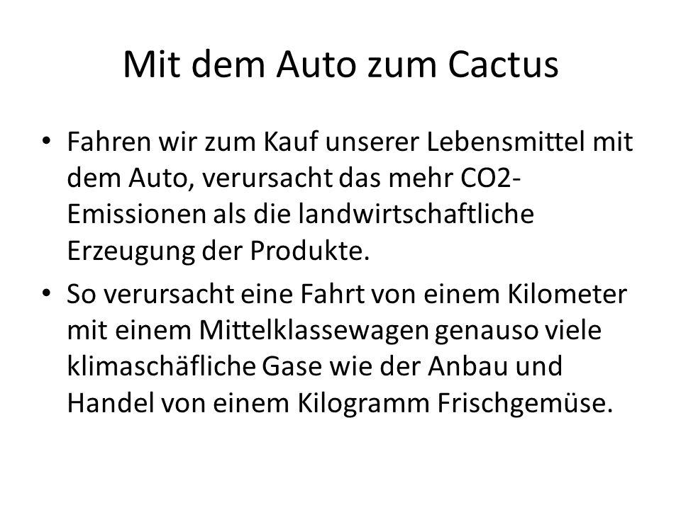 Mit dem Auto zum Cactus