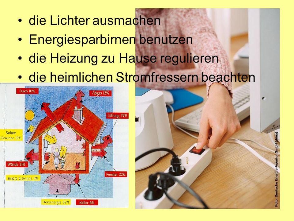 die Lichter ausmachen Energiesparbirnen benutzen. die Heizung zu Hause regulieren.