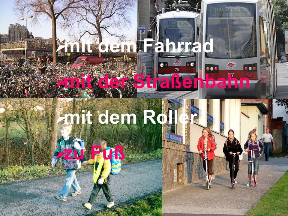 mit dem Fahrrad mit der Straßenbahn mit dem Roller zu Fuß