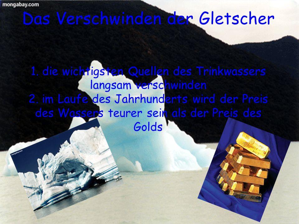 Das Verschwinden der Gletscher 1