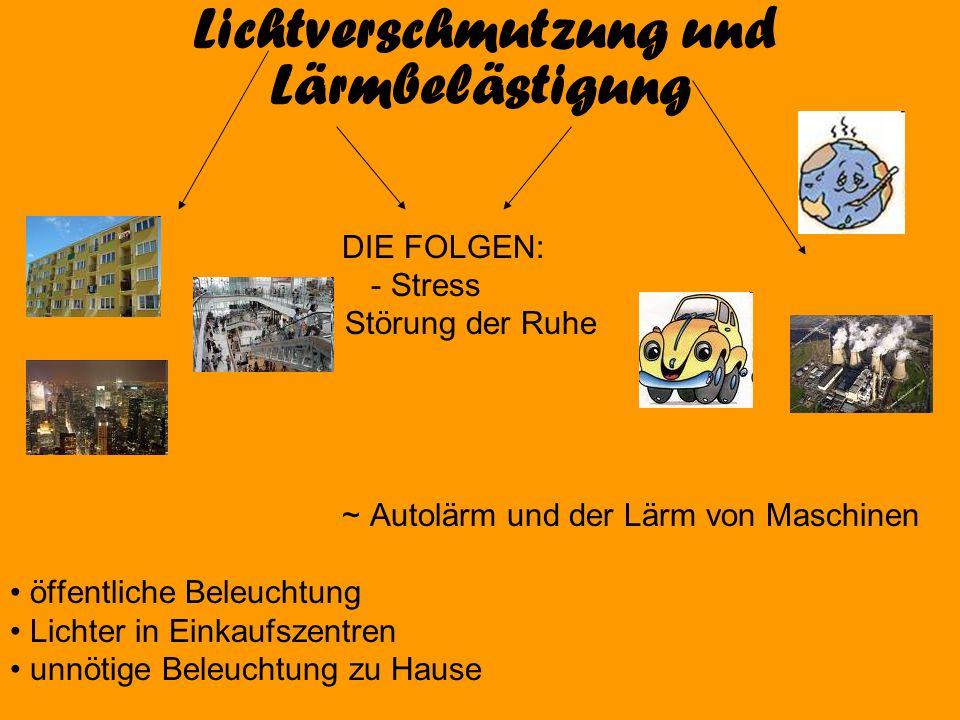 Lichtverschmutzung und Lärmbelästigung