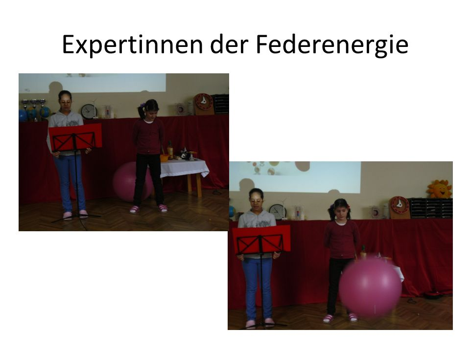 Expertinnen der Federenergie