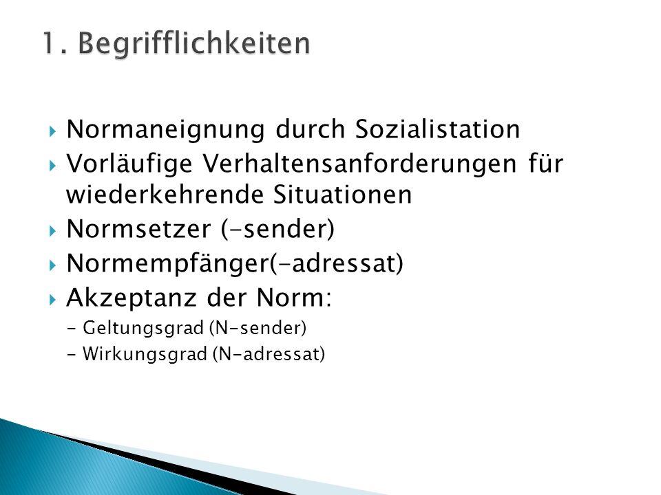 1. Begrifflichkeiten Normaneignung durch Sozialistation