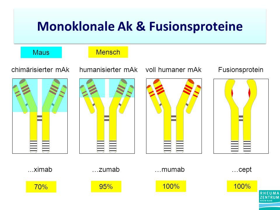 Monoklonale Ak & Fusionsproteine