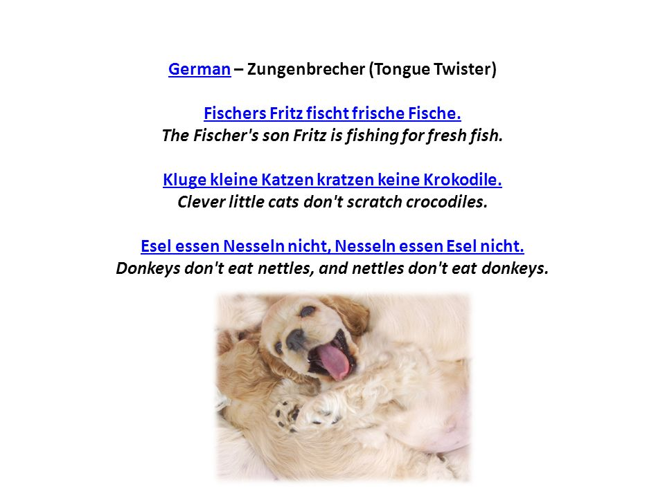 German – Zungenbrecher (Tongue Twister) Fischers Fritz fischt frische Fische.