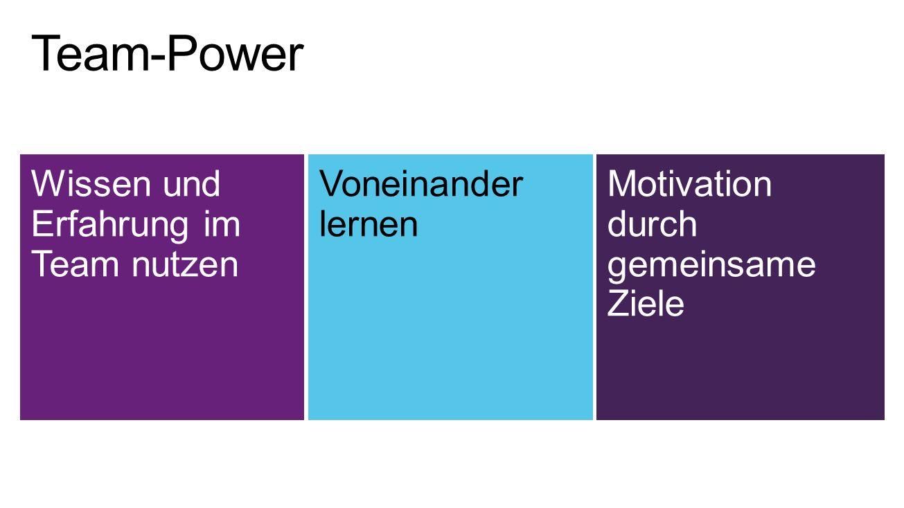 Team-Power Wissen und Erfahrung im Team nutzen Voneinander lernen