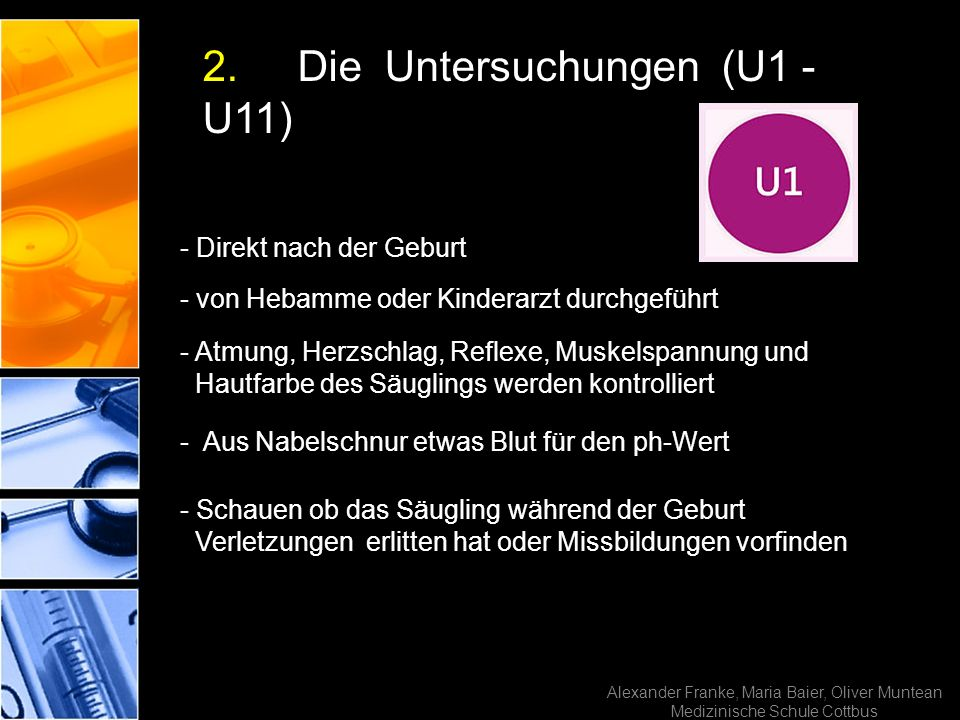 2. Die Untersuchungen (U1 - U11)