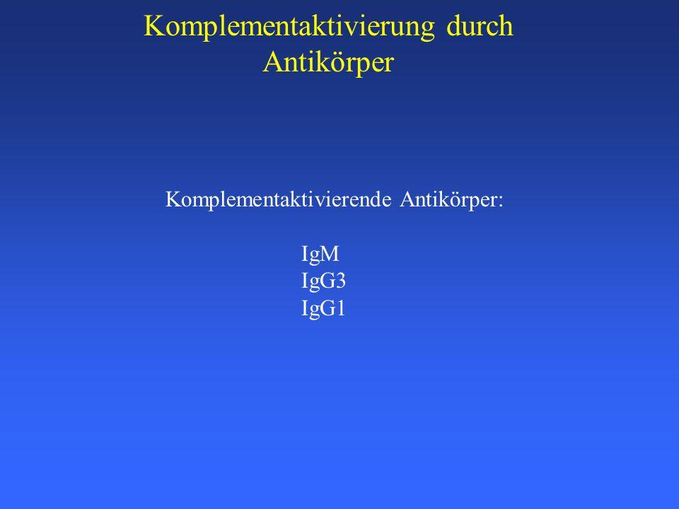 Komplementaktivierung durch Antikörper