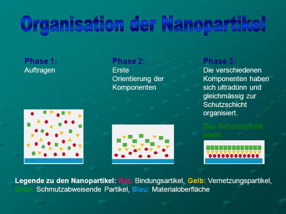 Organisation der Nanopartikel