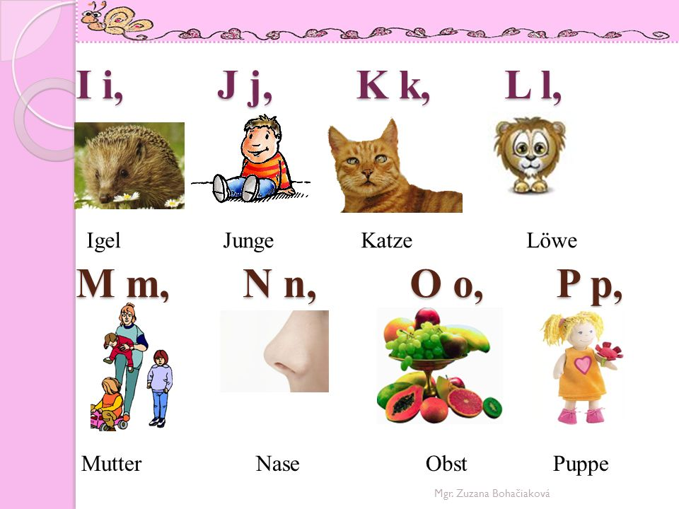 I i, J j, K k, L l, Igel Junge Katze Löwe M m, N n, O o, P p,