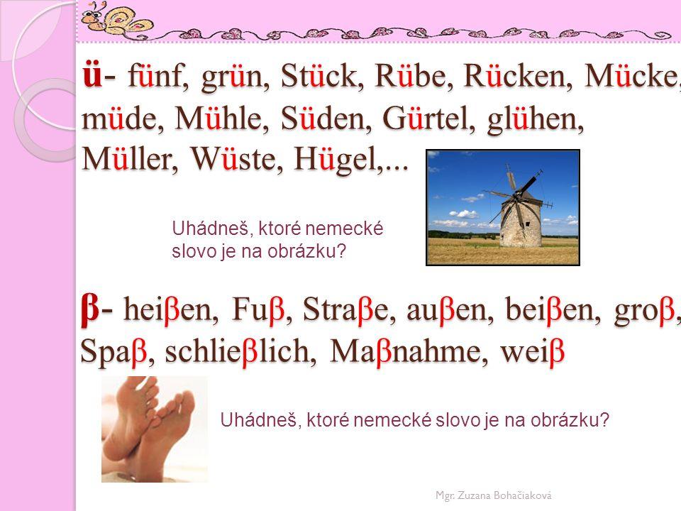 ü- fünf, grün, Stück, Rübe, Rücken, Mücke, müde, Mühle, Süden, Gürtel, glühen, Müller, Wüste, Hügel,...