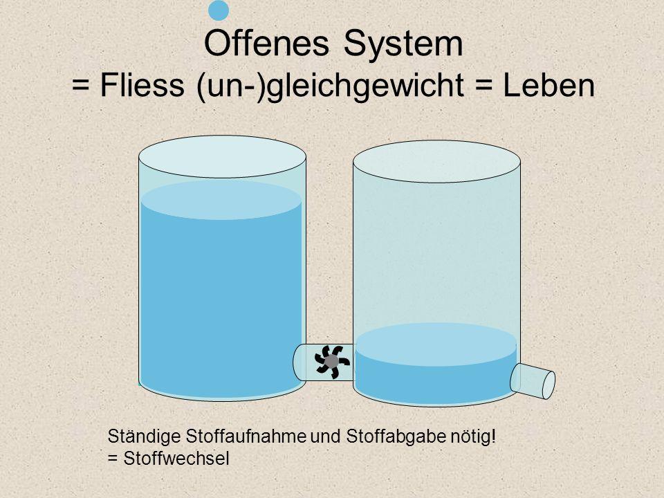 Offenes System = Fliess (un-)gleichgewicht = Leben