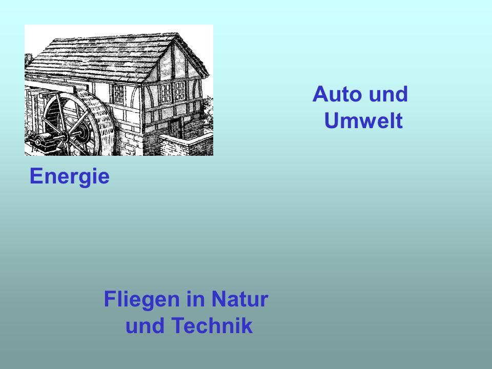 Auto und Umwelt Energie Fliegen in Natur und Technik