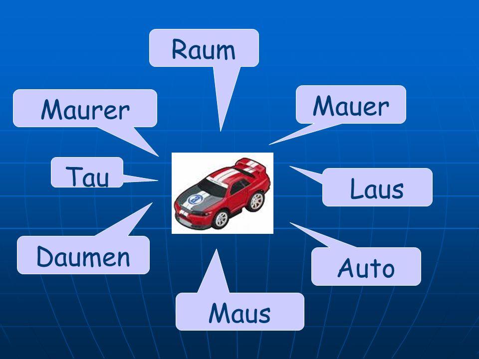Raum Mauer Maurer Tau Laus Daumen Auto Maus