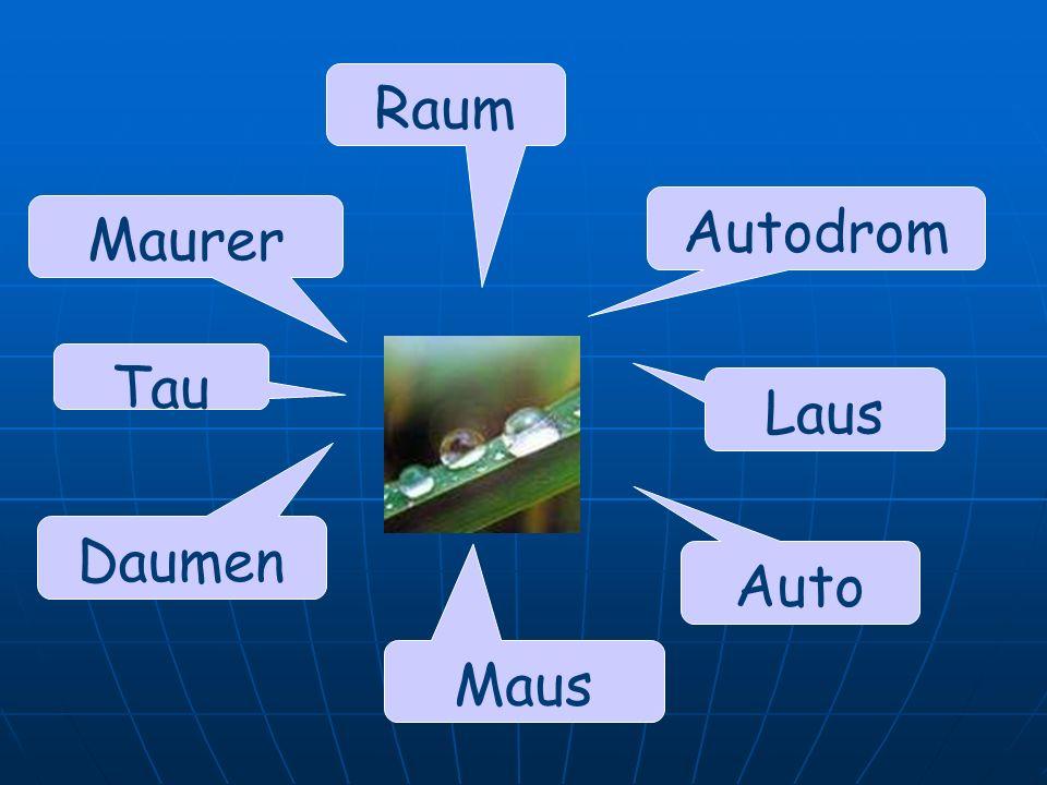 Raum Autodrom Maurer Tau Laus Daumen Auto Maus