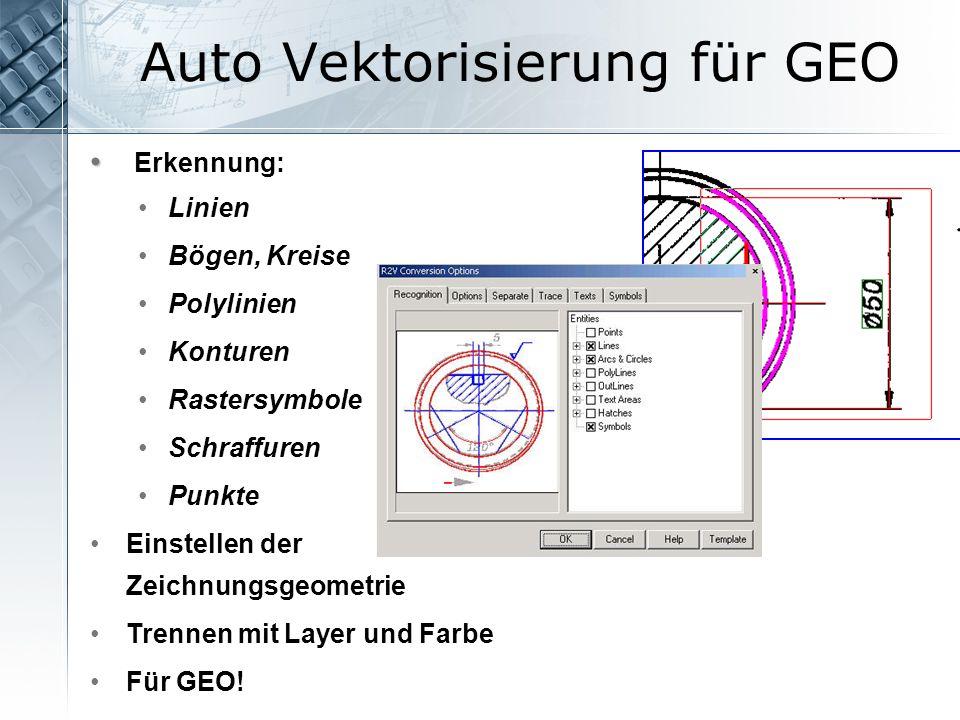 Auto Vektorisierung für GEO