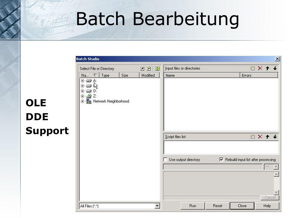 Batch Bearbeitung OLE DDE Support