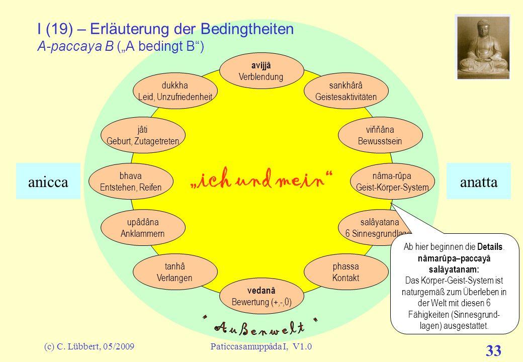 """I (19) – Erläuterung der Bedingtheiten A-paccaya B (""""A bedingt B )"""