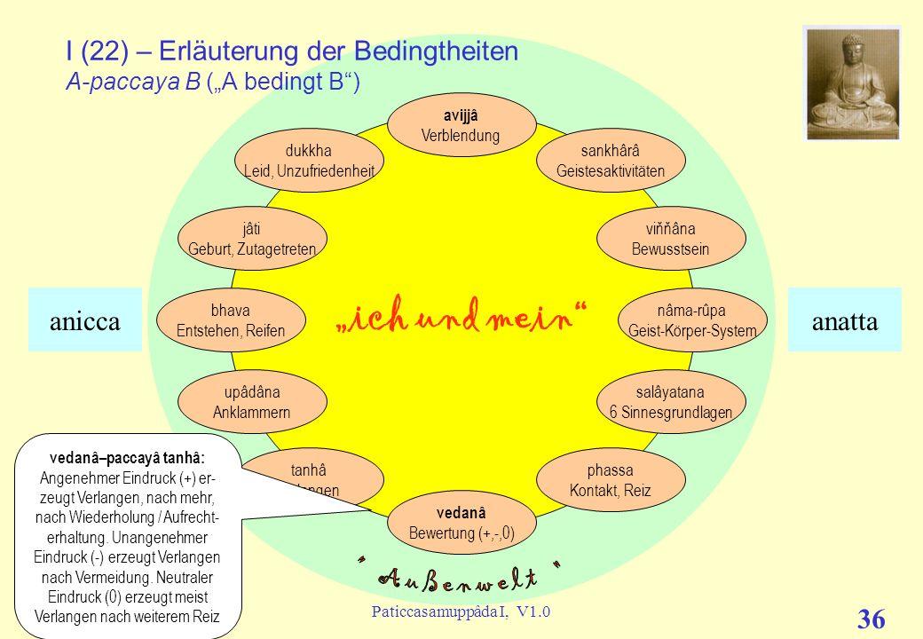 """I (22) – Erläuterung der Bedingtheiten A-paccaya B (""""A bedingt B )"""
