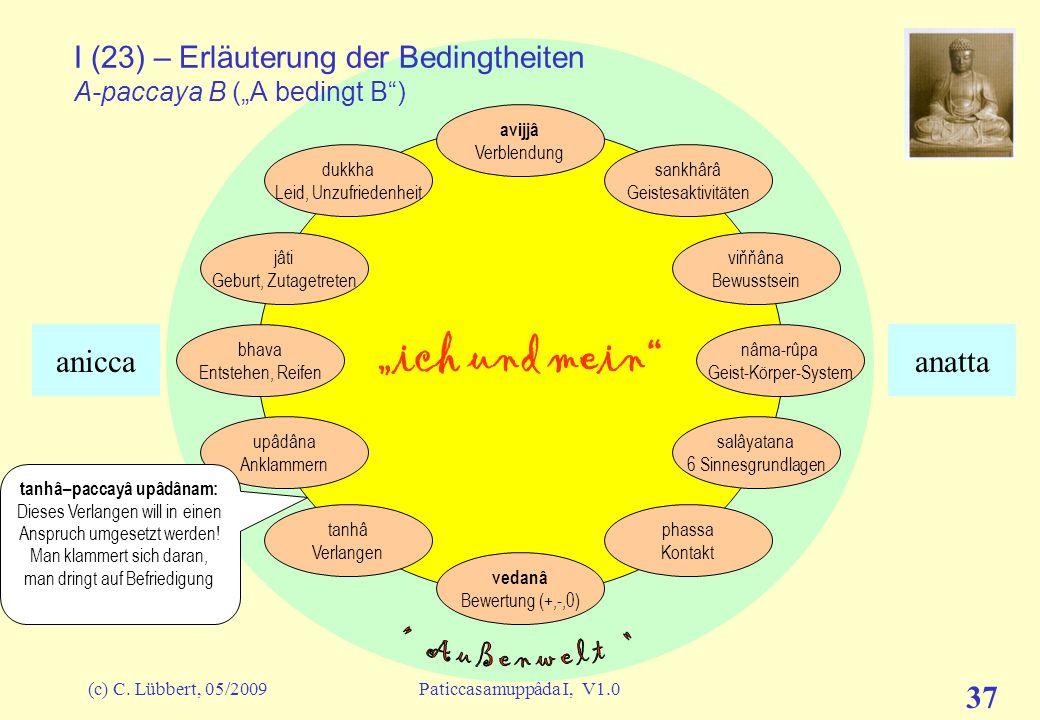 """I (23) – Erläuterung der Bedingtheiten A-paccaya B (""""A bedingt B )"""