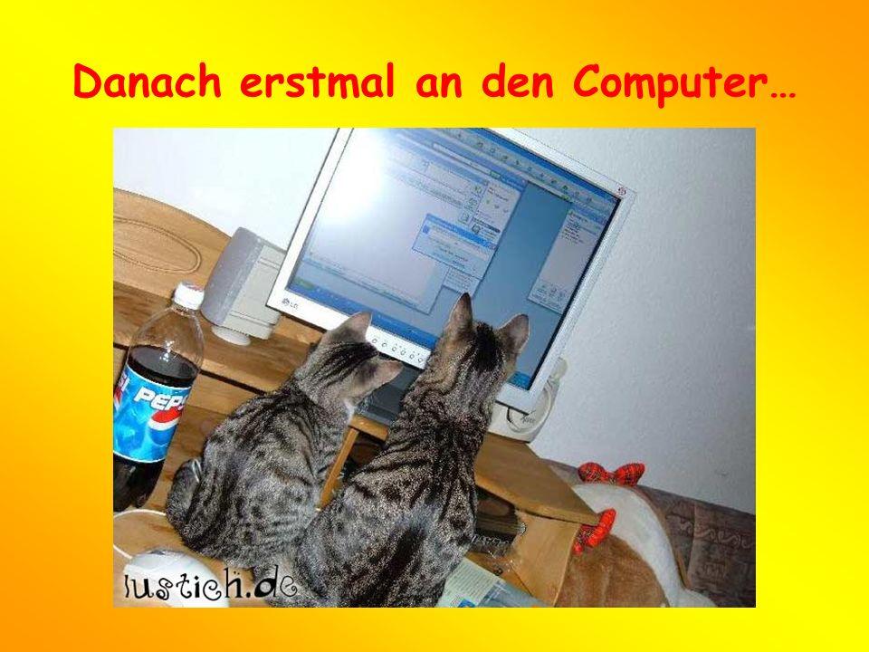 Danach erstmal an den Computer…