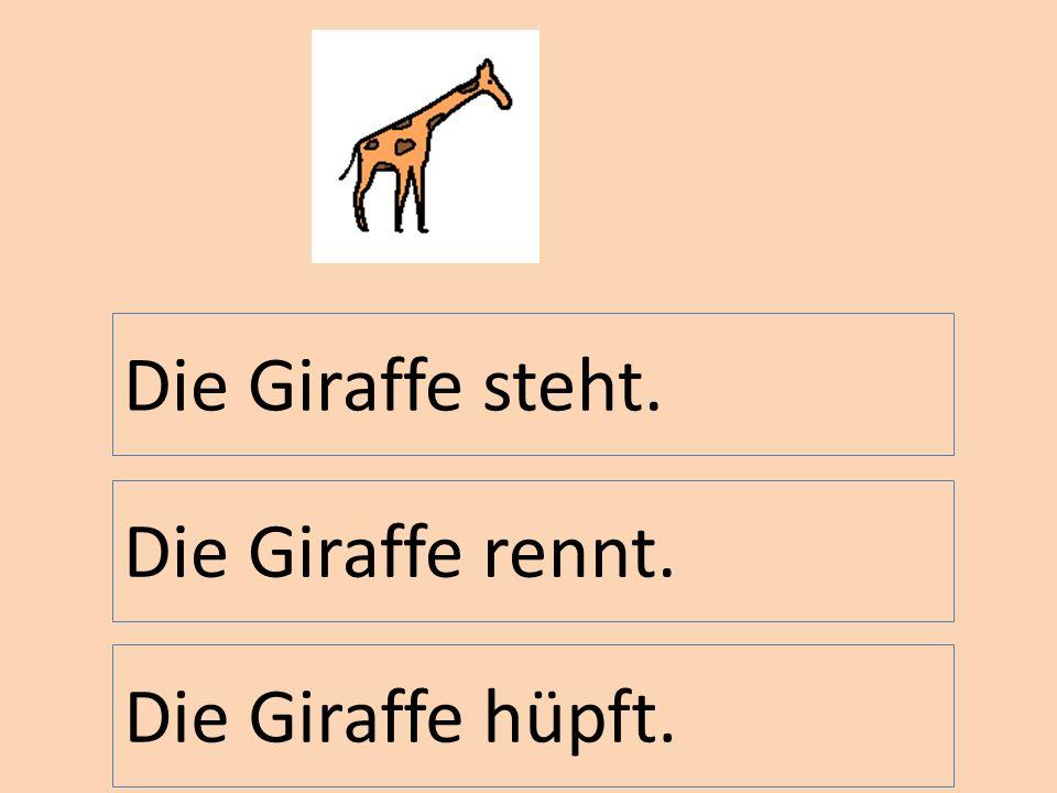 Die Giraffe steht. Die Giraffe rennt. Die Giraffe hüpft.