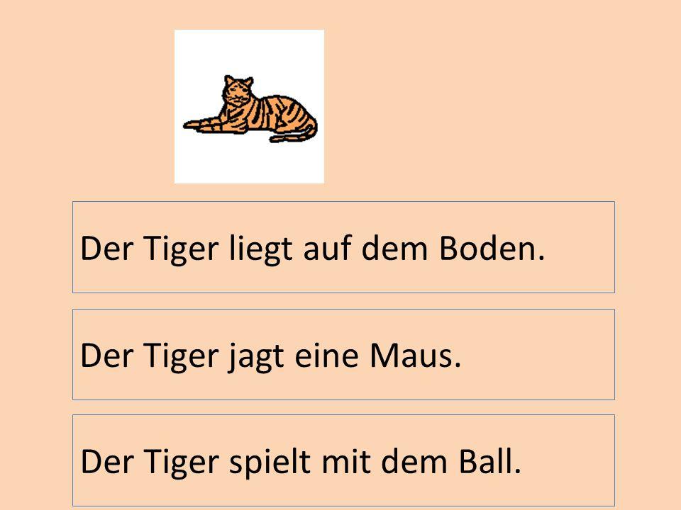 Der Tiger liegt auf dem Boden.