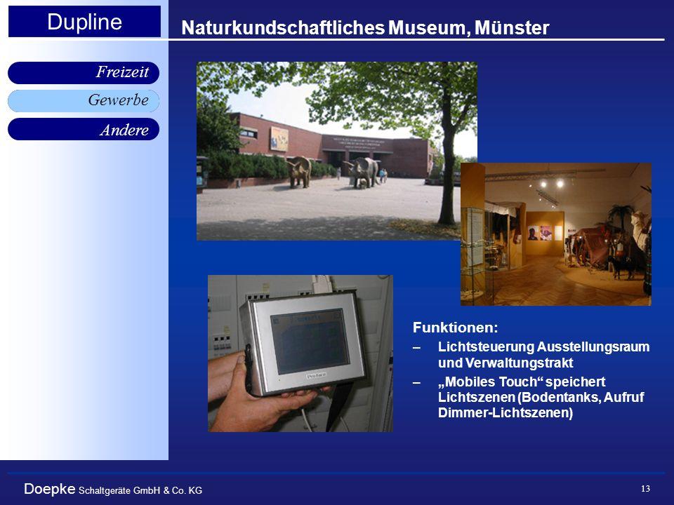 Naturkundschaftliches Museum, Münster