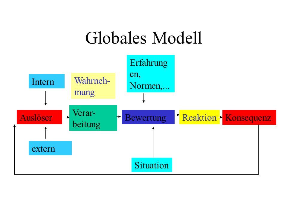Globales Modell Erfahrungen, Normen,... Intern Wahrneh- mung