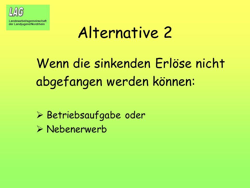 Alternative 2 Wenn die sinkenden Erlöse nicht