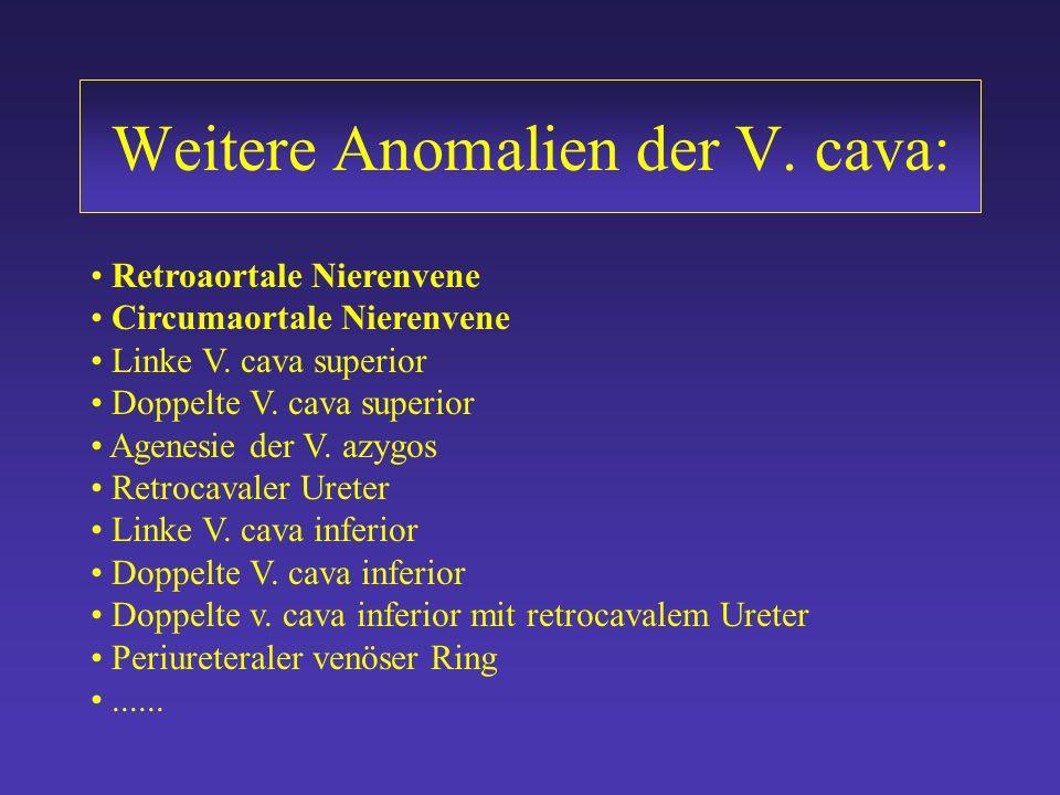 Weitere Anomalien der V. cava:
