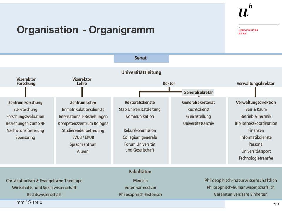 Organisation - Organigramm