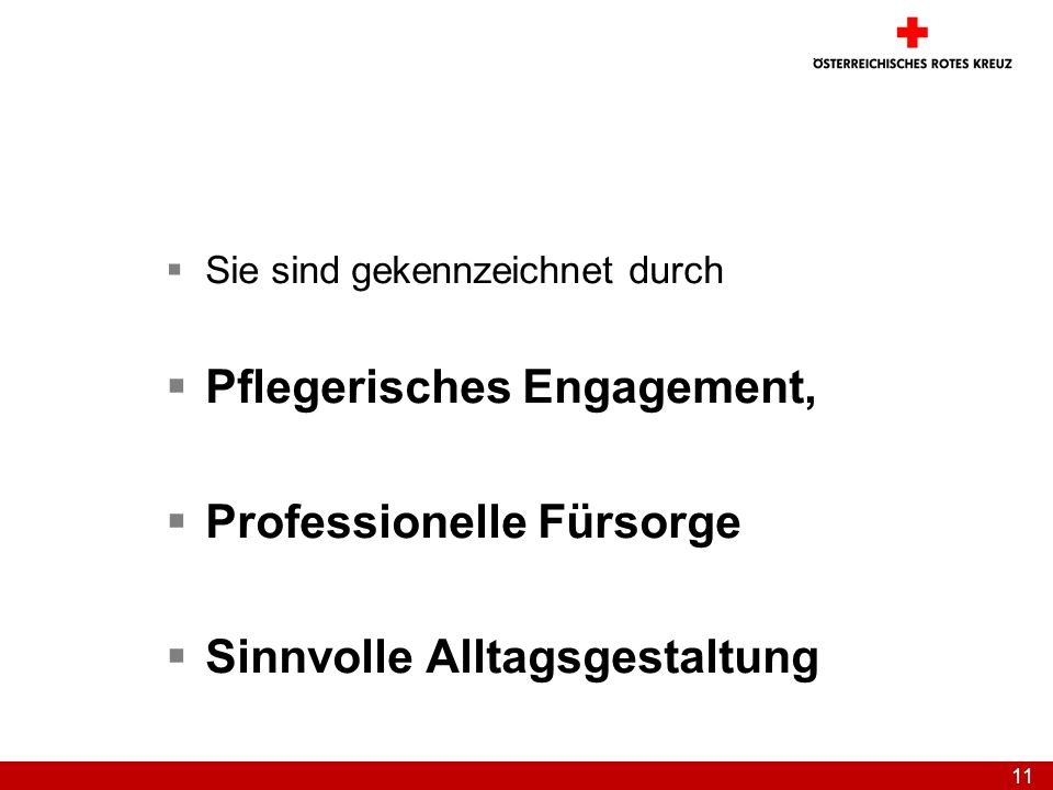 Pflegerisches Engagement, Professionelle Fürsorge