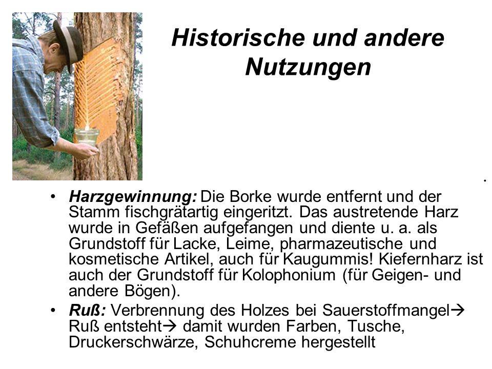 Historische und andere Nutzungen