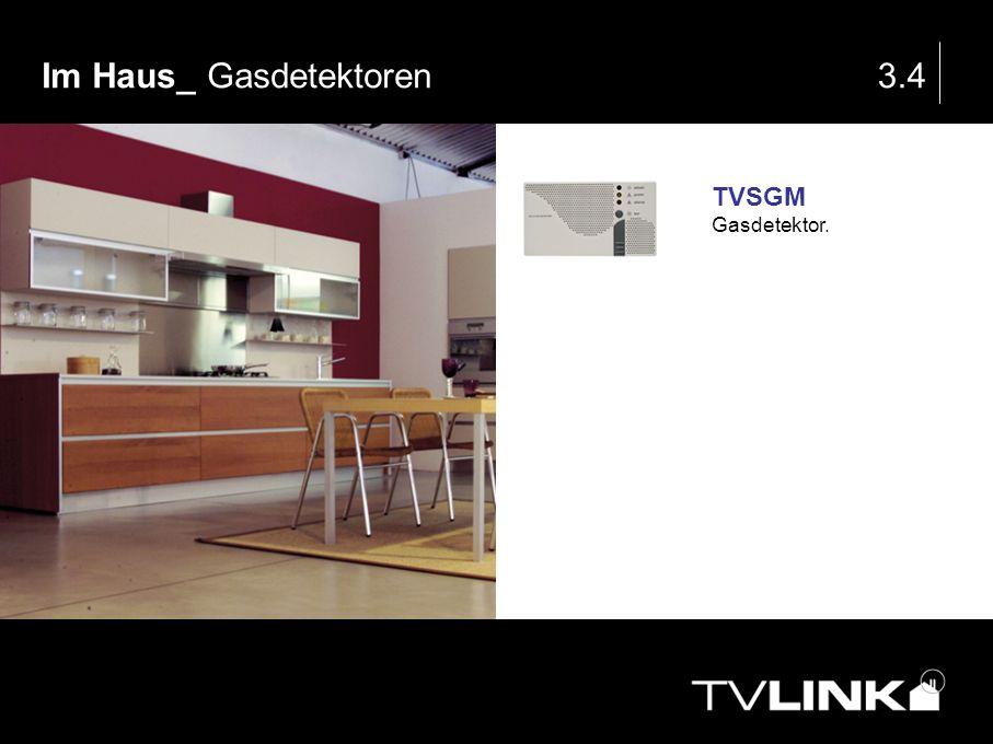 Im Haus_ Gasdetektoren 3.4