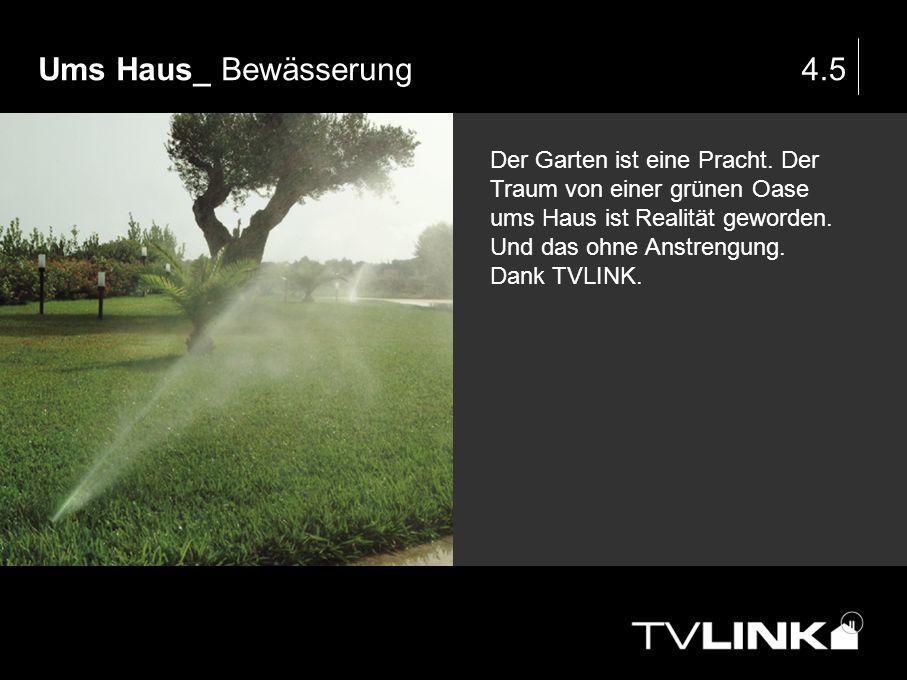 Ums Haus_ Bewässerung 4.5.
