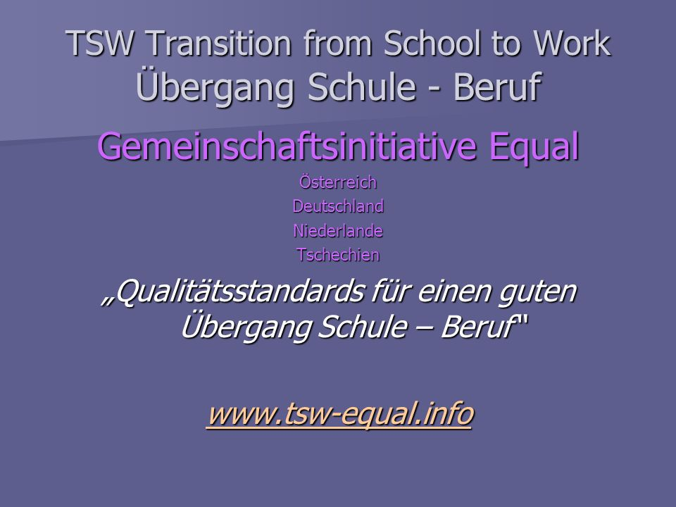 TSW Transition from School to Work Übergang Schule - Beruf