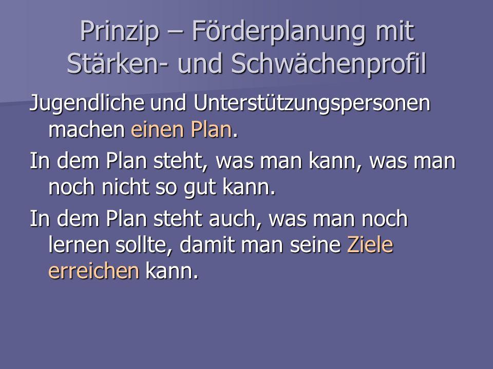 Prinzip – Förderplanung mit Stärken- und Schwächenprofil
