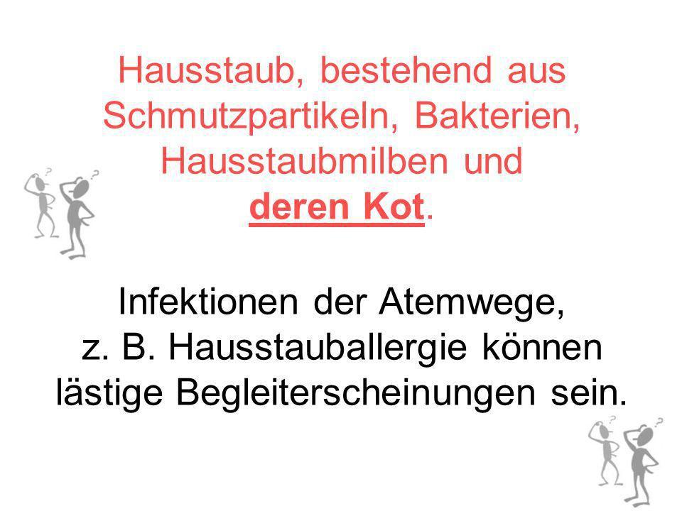 Hausstaub, bestehend aus Schmutzpartikeln, Bakterien, Hausstaubmilben und deren Kot.