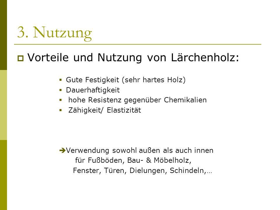 3. Nutzung Vorteile und Nutzung von Lärchenholz: