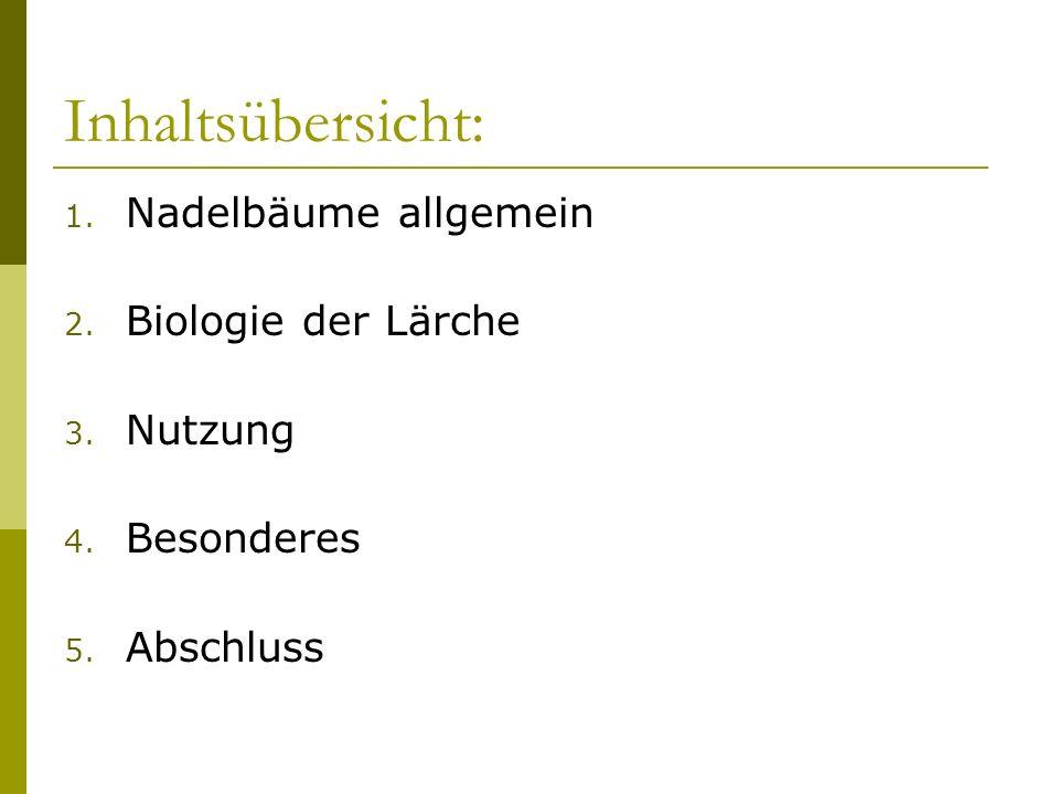Inhaltsübersicht: Nadelbäume allgemein Biologie der Lärche Nutzung
