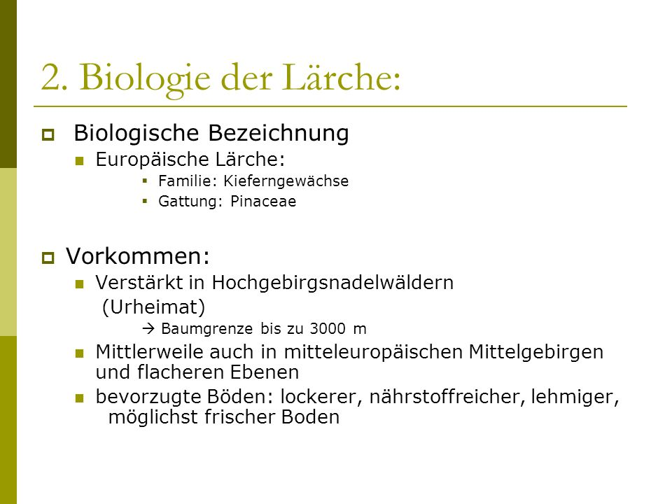 2. Biologie der Lärche: Biologische Bezeichnung Vorkommen: